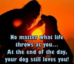 A lick and hug and a tail wag every time you meet the love is eternal and non judgemental