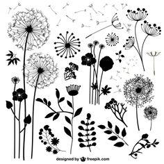 Flores Silvestres Vetores Dente de Leão The post Flores Silvestres Vetores appeared first on Easy flowers. Flower Doodles, Silhouette Vector, Silhouette Cameo Freebies, Pyrography, Zentangle, Doodle Art, Hand Lettering, Coloring Pages, Vector Free