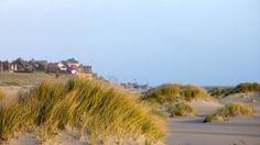 Amrum, northern parts of Germany. Have already been there :-)