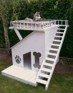 Een buitenhuis voor de hond met groot terras.