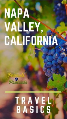 The infamous Napa Valley is located in northern California, just outside of the San Francisco area.  This picturesque region is known as the premier wine region in the United States among wine-loving travelers due to the number of famous vineyards that dot the area.  While Napa Valley is known for both wine and tasty food, visitors will love the charming atmosphere and natural setting; making for a relaxing vacation destination.  #NapaValley