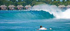 Maldives Surf Package - Maldives Surf Safari