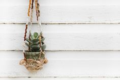 Post image for DIY Hanging Crochet Plant Holder
