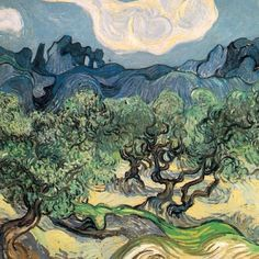 VanGogh Olive Trees in Provence