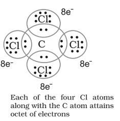 Looking for Covalent Bond Examples with its types - Polar and Nonpolar along with suitable examples and list of remaining covalent compounds.