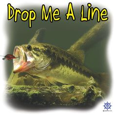 Purchase this largemouth bass t shirt design at: http://www.captntom.com/fishing-t-shirt-boatique/shop/3210-bass-fishing-t-shirt-drop-me-a-line/ - You'll find over 200 cool fishing, boating, hunting, funny and other t-shirts here.