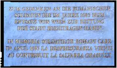 Daca romanii nu salvau Viena in timpul asediului turcilor, cui mai lingeau ungurii cizmele pentru a primi cadou teritoriile altora? Moldova, Salvia, Mai, Vienna, Soldiers, Sage