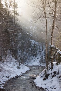 Winter ♥ stream, trees, silent, peaceful, snow, beauty of Nature, misty, mist, sunbeams, photo