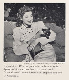 Greer Garson with Ramadhipati IV. So many movie stars love cats. #SiameseCat