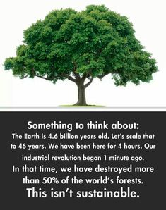 Something to think about: The Earth is 4.6 billion years old. Let's scale that to 46 years. We have been here for 4 hours. Our industrial revolution began 1 minute ago. In that time, we have destroyed more than 50% of the world's forests. This isn't sustainable.