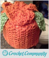 EDITOR'S CHOICE (10/02/2015) toilet paper cover by Tina Rivera View details here: http://crochet.community/creations/3742-toilet-paper-cover