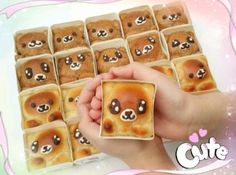 "Bear in a box椰香""熊""豆包"