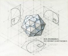 fibonacci architecture - Google zoeken