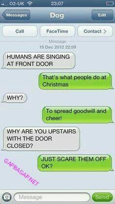 Funny Text About Funny Dog vs. Christmas Santa