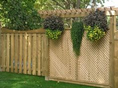 Backyard privacy lattice ideas - protractedgarden