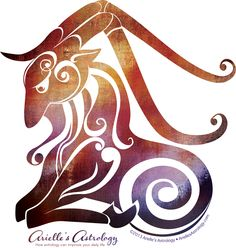 Image result for Capricorn (December 21-January 19)