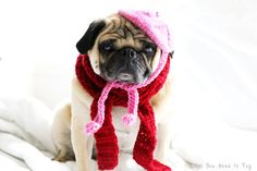 Petite French Dog Beret and Scarf Set by AllYouNeedIsPugShop, $26.00 #pugs #pug #allyouneedispug #petclothing #pets #dogs #petfashion #dogclothing