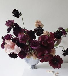 Scabiosa, ranunculus, carnation and bearded iris - great florals for a Fall wedding Deco Floral, Arte Floral, Floral Design, Floral Wedding, Wedding Bouquets, Wedding Flowers, Floral Centerpieces, Floral Arrangements, Centrepieces