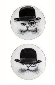 rory dobner cat - Google Search