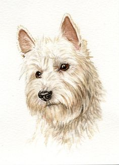 West highland terrier dog painting 5x7 print from by Earthspalette