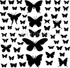 Silhouette papillon imprimer recherche google silhouette pinterest monarch butterfly - Silhouette papillon imprimer ...