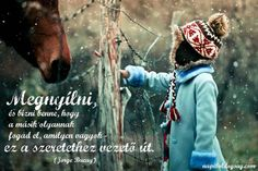 Child Horse Winter Snow Curiosity hd wallpaper by parislane My Horse, Horse Love, Horse Girl, Friendship Wallpaper, You Are My Friend, No One Loves Me, Baby Pictures, Pretty Pictures, Cute Kids