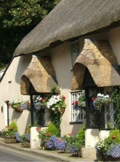 English cottage ~ LOVE the windows and the thatched roof!
