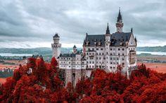 Zamek, Bawaria, Drzewa
