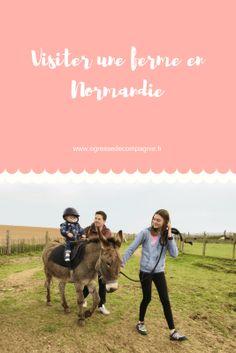 Visiter une ferme en famille en Normandie