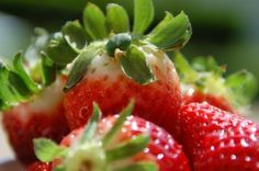 strawberries freshness flavor