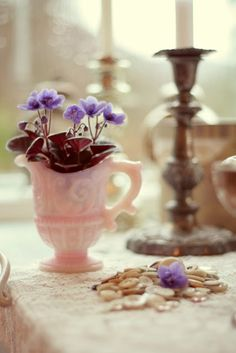 love the flowers in precious teacup