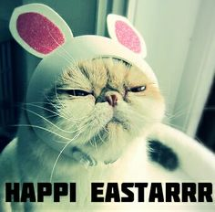 Happily Easter