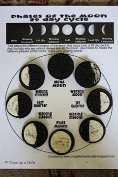 Education Hands On Science: Phases of the Moon Activities for Kids. We did this for a space unit for our SDLC! 4th Grade Science, Middle School Science, Elementary Science, Science Classroom, Teaching Science, Science Education, Science For Kids, Earth Science, Science Space