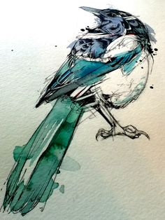 // Roughly Drawn Things. (Two for Joy. Magpies for Dave in the UK! Ink,...)
