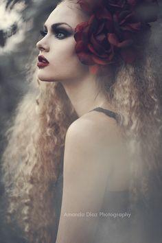Rose by Amanda Diaz