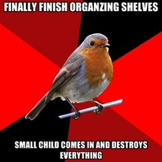 Retail Robin - Most popular images all time - page 27 | Meme Generator