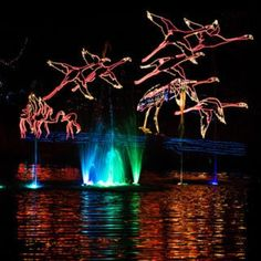 River of Lights - Albuquerque, NM #Yuggler #KidsActivities #Holiday