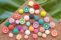 Hey, I found this really awesome Etsy listing at https://www.etsy.com/listing/218614497/small-mixed-flower-thumb-tacks-eclectic