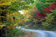 backroads in the fall :)