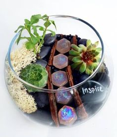 Fun, Food, Friends and Terrariums! What can be better than hanging out with friends at a Plant Nite Event? Plant Nite will be in New Haven, Hamden, Branford, Derby and Milford - bringing a NEW kind of fun to a restaurant near you! Get 30% off with coupon code FUN30.  Click here for tickets: https://www.plantnite.com/pages/events/index/newhaven#date:1