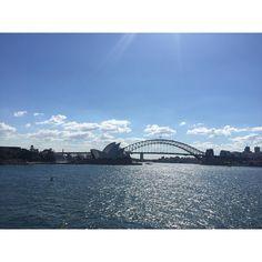 Happy Thursday! Works nearly over and it's nearly the long weekend! Yay Sydney is glorious today! How's your day going?    #liss #lissdone #sydney  #sydneyoperahouse #sydneyharbourbridge #mrsmaquarieschair #botanicalgardens #bbg #love #kaylasarmy #bbg1 #bbggirls #bbgcommunity #bbgaustralia #bbgsydney #fitness #health #happiness #journey #workout  #healthier #sweatwithkayla #fitfam #thekaylamovement2016 #bbgbegginer #week4 #kaylaitsines #resistance #followmeonthisjourney #deathbykayla by…