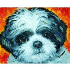 Shih Tzu Black and White Pup Dog Art 8x10 Print by Dottie Dracos   LarkStudios - Print on ArtFire