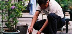 Gjødsling av potter og kar