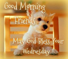 Good Morning Wednesday quotes quote days of the week wednesday hump day wednesday quotes happy wednesday wednesday morning Wednesday Morning Images, Happy Wednesday Pictures, Wednesday Hump Day, Wednesday Greetings, Blessed Wednesday, Happy Wednesday Quotes, Wacky Wednesday, Wednesday Memes, Wonderful Wednesday