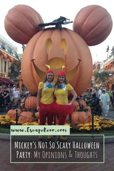 Mickey's Not So Scary Halloween Party at Disneyland Resort is a super fun event that occurs throughout September and October every year. You can trick-or-treat in the park and dress up in costume! Check out my experience!
