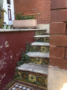 1800's Terrace House feature antique tiles on the main steps #herritagehomes #sydney #enmoreroad