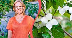 Garden Plants, V Neck, Women, Tips, Nature, Fashion, Moda, Naturaleza, Fashion Styles