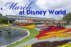 March at Disney World is best described as mild temps, lots of crowds and higher prices. Most of the time the first week of March is very light crowds but in 2014, Mardi Gras falls during the first week so higher-than-normal crowds will appear there. The rest of the month is very, very busy with...