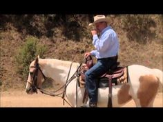 Better brakes! Creating a nicer stop from your horse and the walk, trot and canter with Charles Wilhelm Training | EquiSearch Video Library