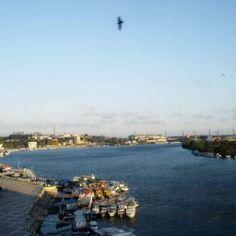 Experienţe în România: Trip to Tulcea -Dunavăţ-Halmyris – Romanian Journeys Dolores Park, Journey, Water, Travel, Outdoor, Gripe Water, Outdoors, Viajes, The Journey